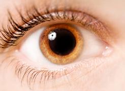 IOL - Blog - Por que no exame ocular a criança tem que dilatar a pupila