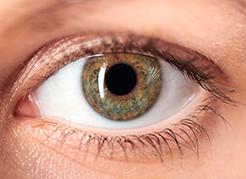 HOL - Blog - Doenças oculares
