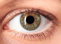 HOL - Blog - Doenças oculares (thumb)