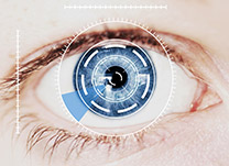 biometria-master