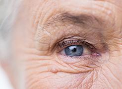 Hospital-de-Olhos-Limongi---Blog---Cuidados-com-a-saúde-ocular-na-terceira-idade