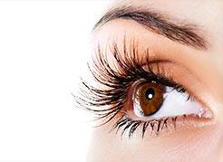 hospital-de-olhos-limongi-blog-abril-marrom