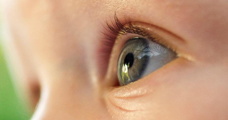 hospital-de-olhos-limongi-blog-a-importancia-do-teste