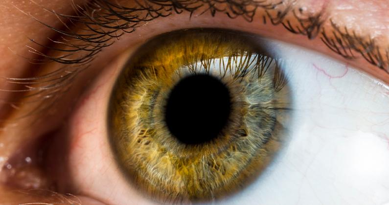 Hospital de olhos limongi - blog - Dia da Saúde Ocular